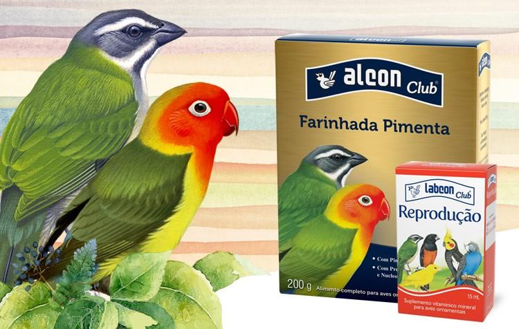 como preparar a ave para o período reprodutivo?