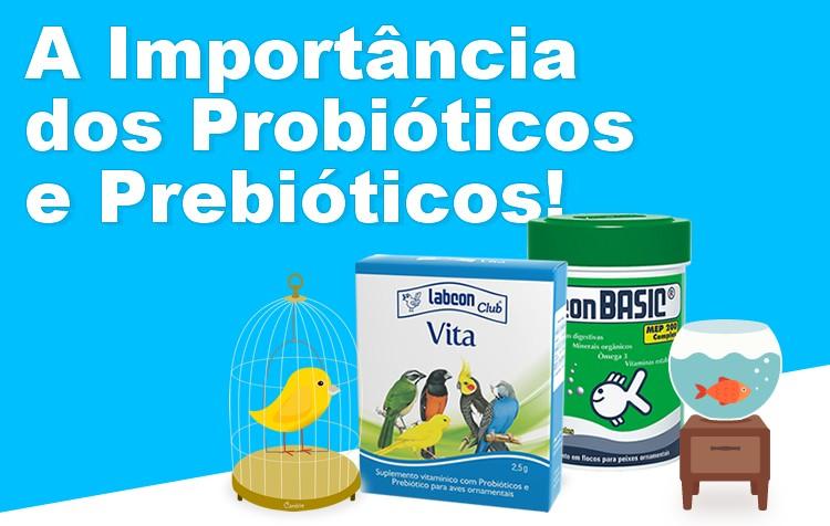 a importância dos probióticos e prebióticos