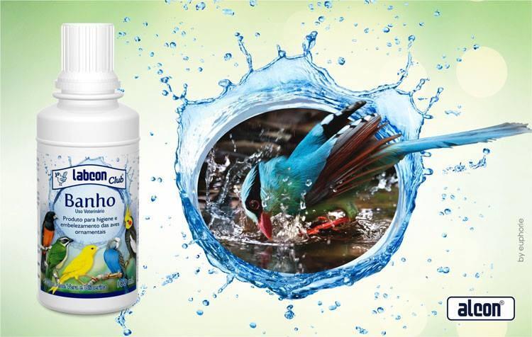 os benefícios do banho para as aves