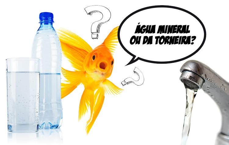 devo usar Água mineral ou da torneira no aquário?