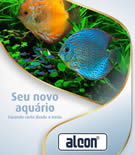 guia seu novo aquario