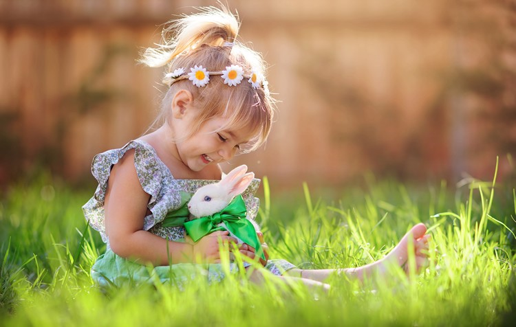 responsabilidade com animais de estimação: cuidando do bem-estar
