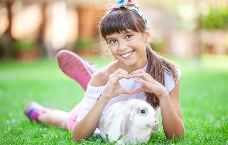 alimentação de roedores e coelhos